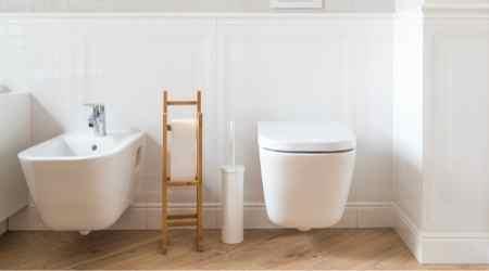 Can you poop in a Saniflo toilet?